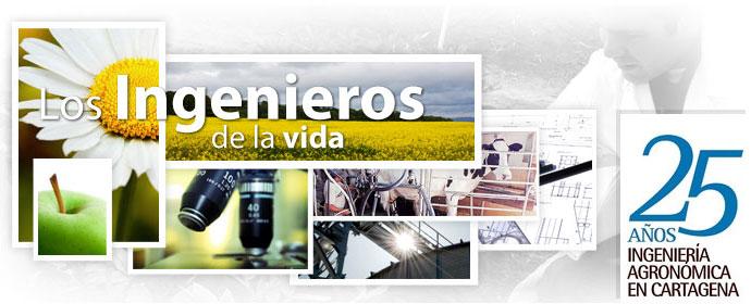 20130206094508-banner-inf.jpg